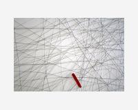 Peinture1 (oil on canevas)  2013 - dessin découpé et épinglé en avant du mur - crayon et peinture à l'huile sur Tyvek, épingles - 150 x 325cm  détail