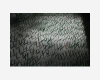 Le dessin en herbe (dessin d'identification)  2013 - traits de crayon de couleur sur papier découpés