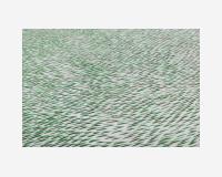 Le dessin en herbe (3) / détail, 2018  Traits de crayon vert sur Tyvek découpés,  150 x 620 cm